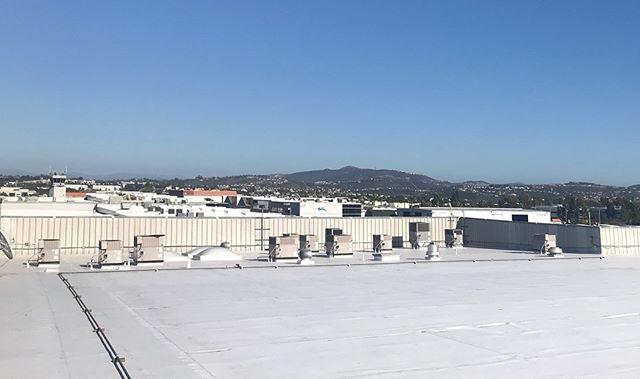 new TPO roof